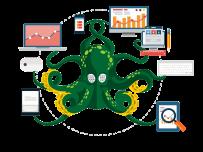 octopus-v1