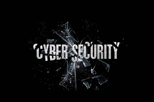cyber-security-1805246_640