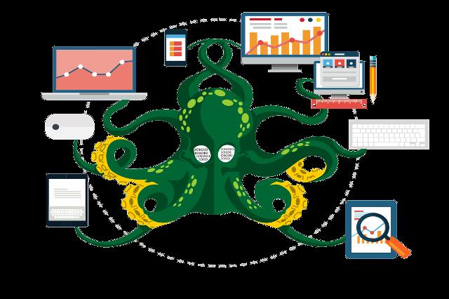 octopus-v2